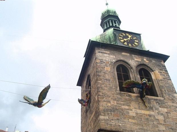 Pterodaktyly najdete zde: http://praga-magica.blog.cz/1406/kolibrici